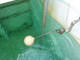 受水槽の内部