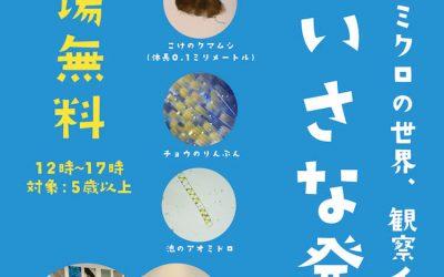 『第2回ちいさな発見 in TSUTAYA松本庄内店』イベントレポート